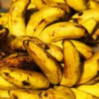 New export markets for Philippine bananas eyed