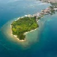 Punta Dumalag fish pens  blamed for massive pollution