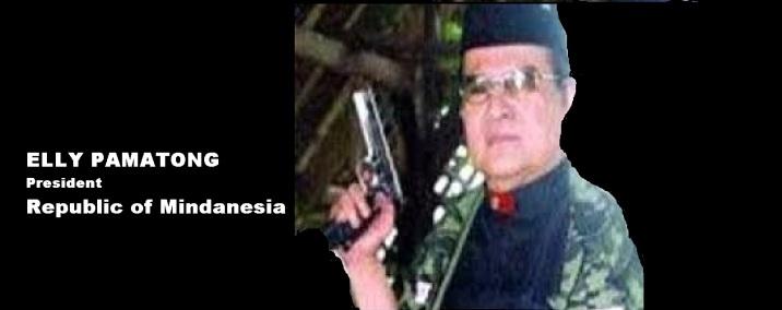 pamatong