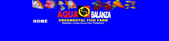 aqua new logo